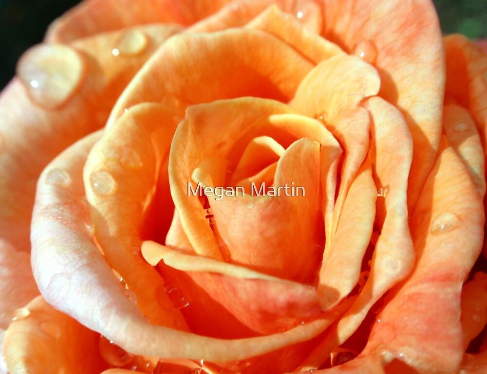 Orange Sherbet by Megan Martin
