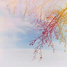 Red Branches by anartfulsoul