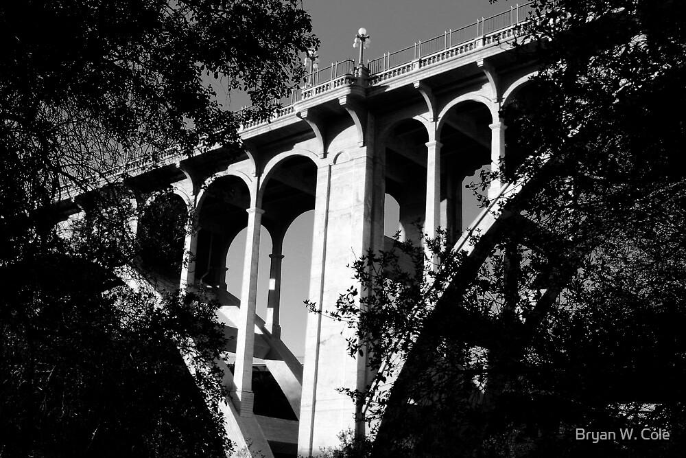 A view of Colorado Street Bridge by Bryan W. Cole