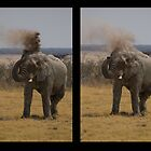Dust Bath by Courtney Goddard