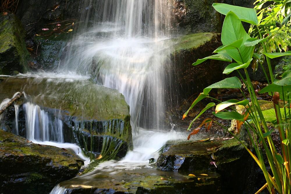 Waterfall in Brisbane II by Ianec