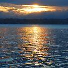 Golden Heaven - Valentine NSW by Bev Woodman