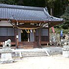 Toshogu Shrine by Michael McCasland