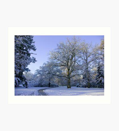 Path through Winter Wonderland Art Print