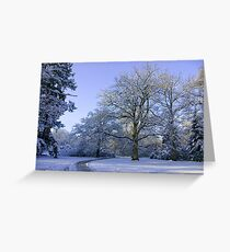 Path through Winter Wonderland Greeting Card