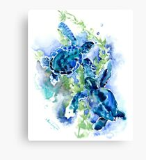Sea Turtles Turquoise BLue design Canvas Print