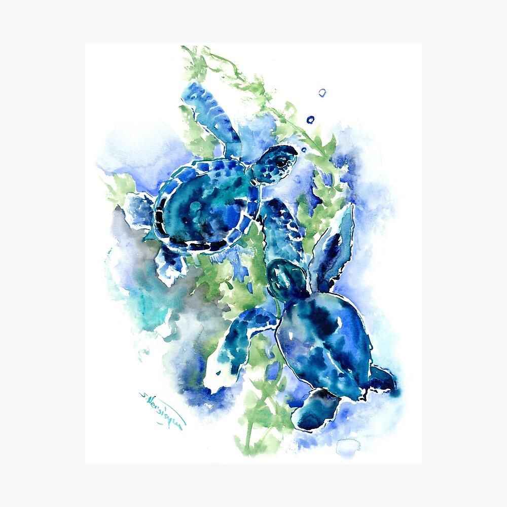 Sea Turtles Turquoise BLue design Photographic Print