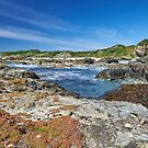 Colours of King Island by Pauline Tims