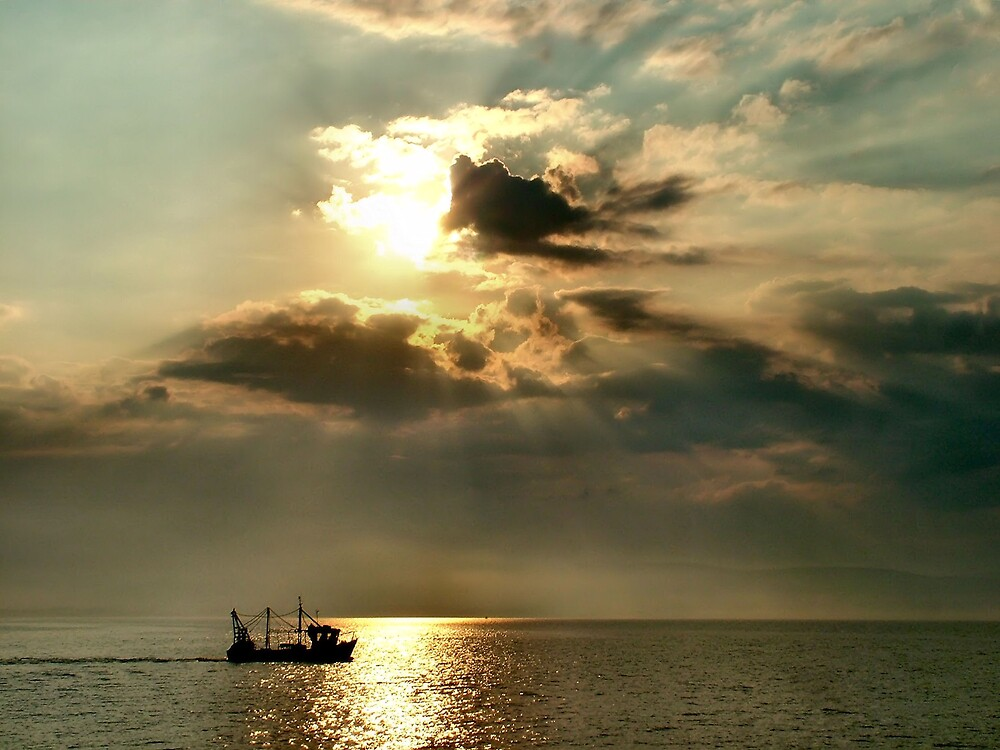 Gone Fishing by Calum Davidson