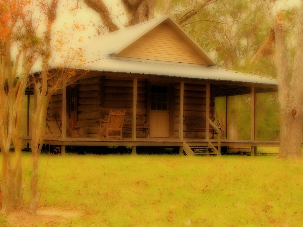 Log Cabin by DottieDees