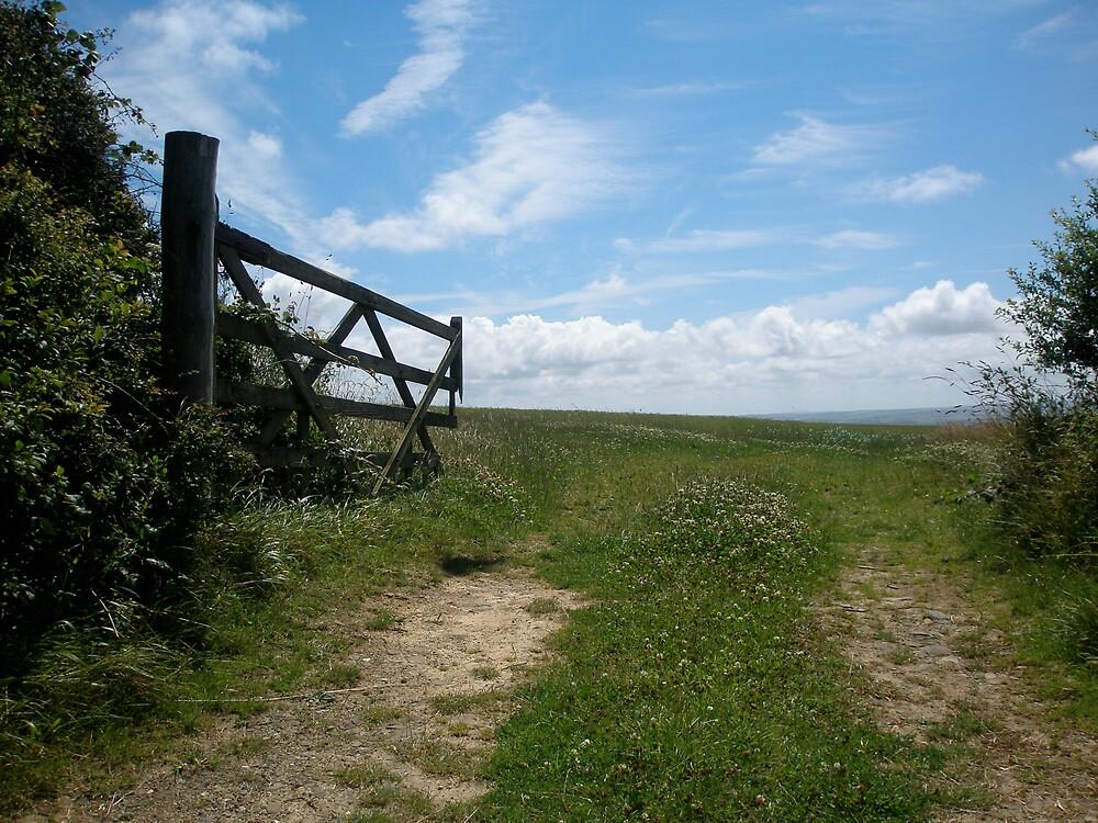Open gate into Devon field  by sassygirl