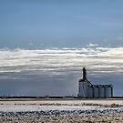 A Prairie View by Teresa Zieba