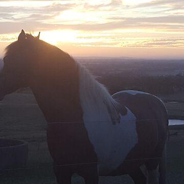 EXCALIBAR Horse  by Rachel3