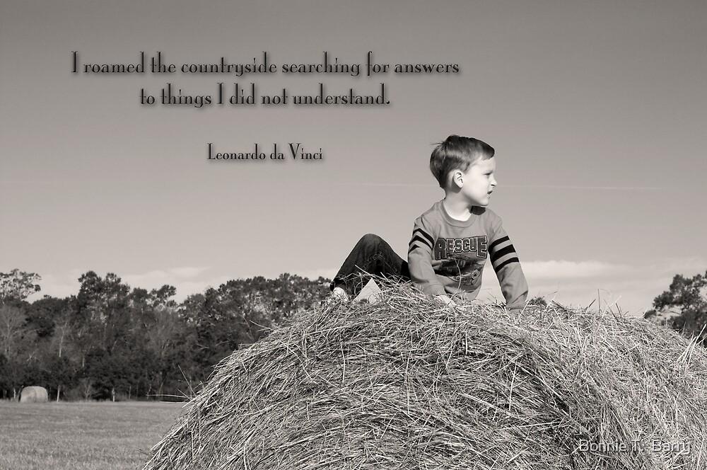 Countryside Wisdom by Bonnie T.  Barry