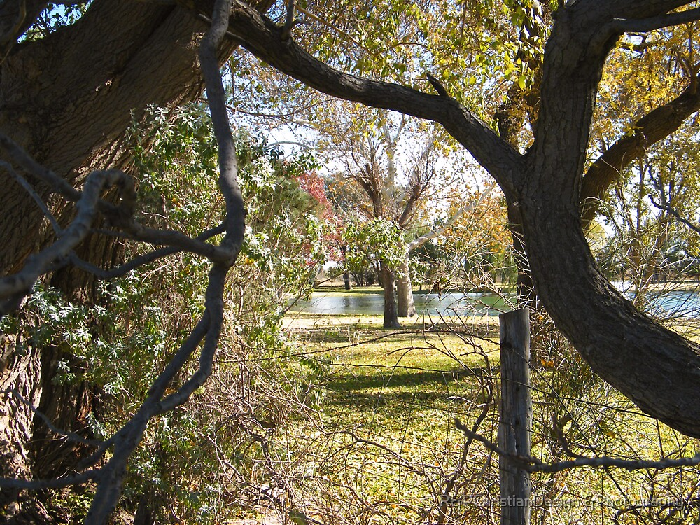 View Through A Fence by R&PChristianDesign &Photography