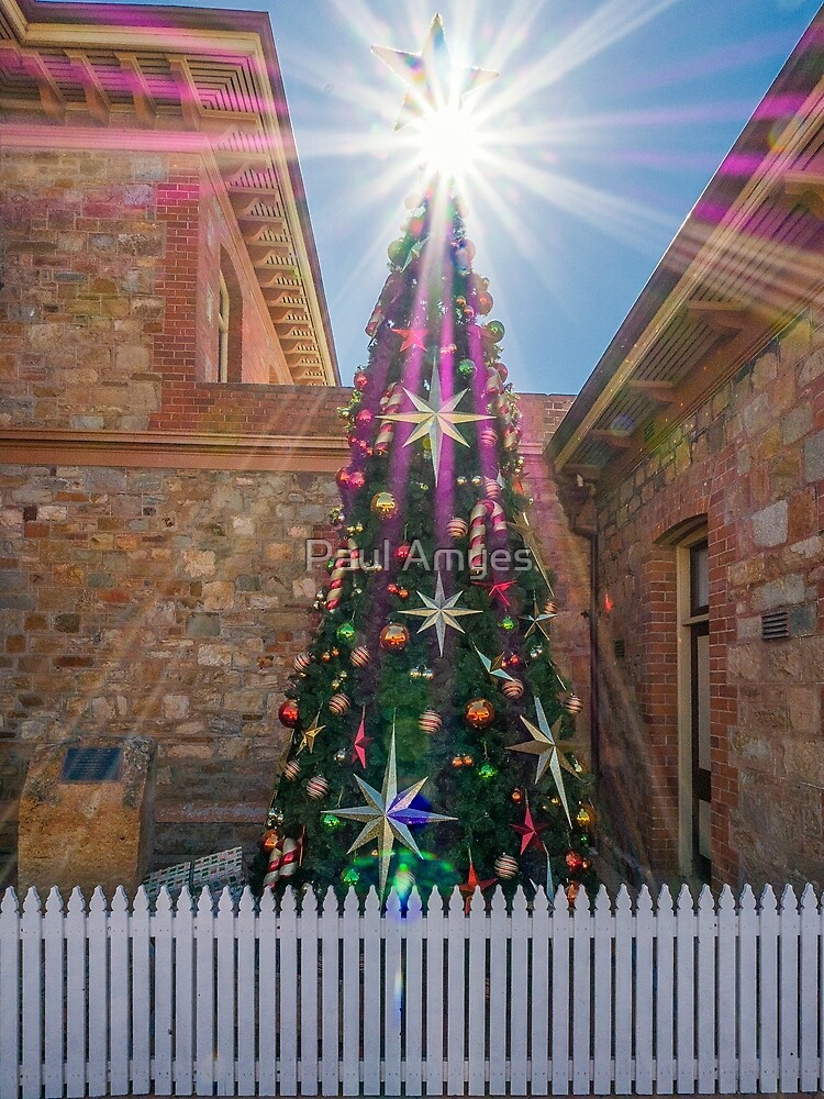 Christmas Star by Paul Amyes