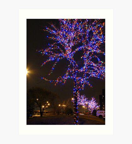 Street Christmas Trees #2 Art Print