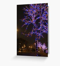 Street Christmas Trees #2 Greeting Card