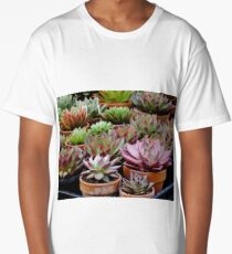 Echeveria Agavoides Collection Long T-Shirt