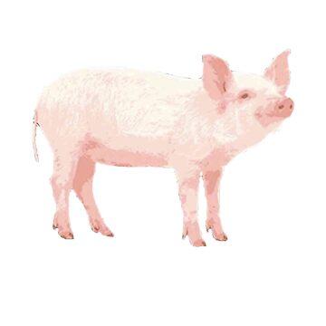 Oh My God Pig  by egodang