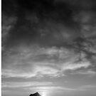 Island Sunrise  by Jeff Harris