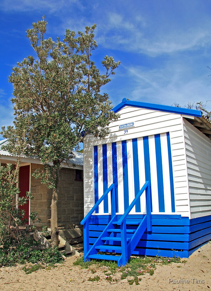 Beach Hut Dromana by Pauline Tims
