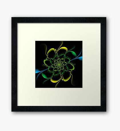 Shadow Bloom Framed Print