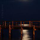 Moonlight by Clayton Bruster