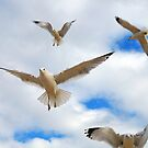 Angels In Flight by Clayton Bruster