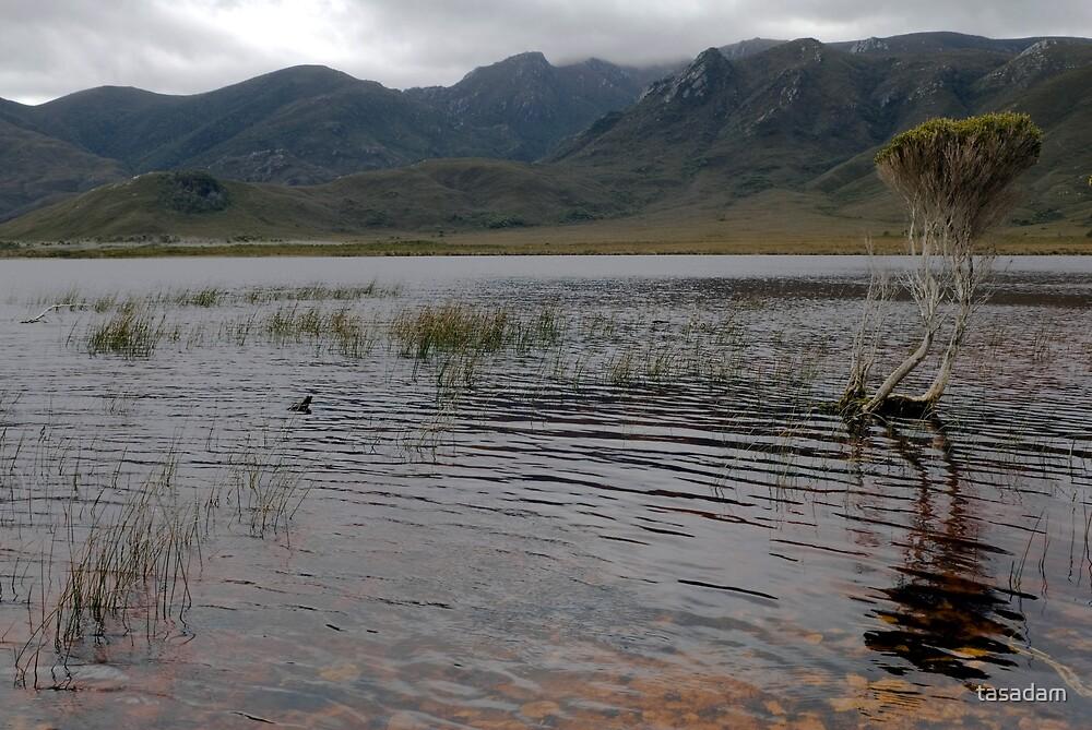The Essence of South West Tasmania - Freney Lagoon and Bathurst Range by tasadam