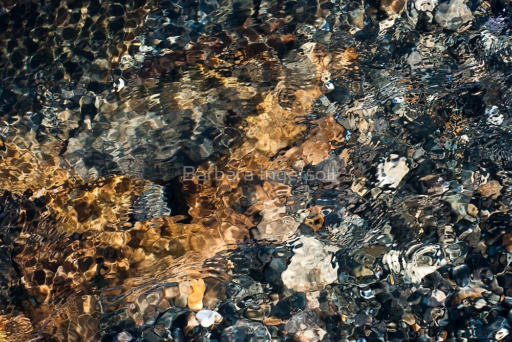 Water Ripples by Barbara Ingersoll