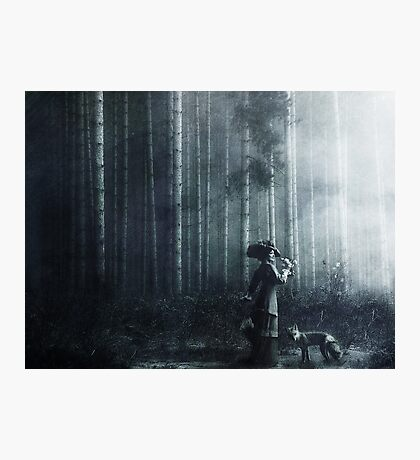 Fable Photographic Print