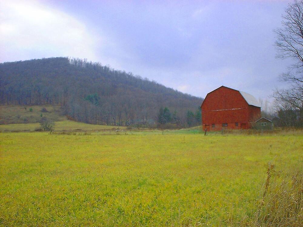 Red barn by mountain by greendarner