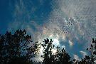 Iridescent Skies  by Paul Gitto