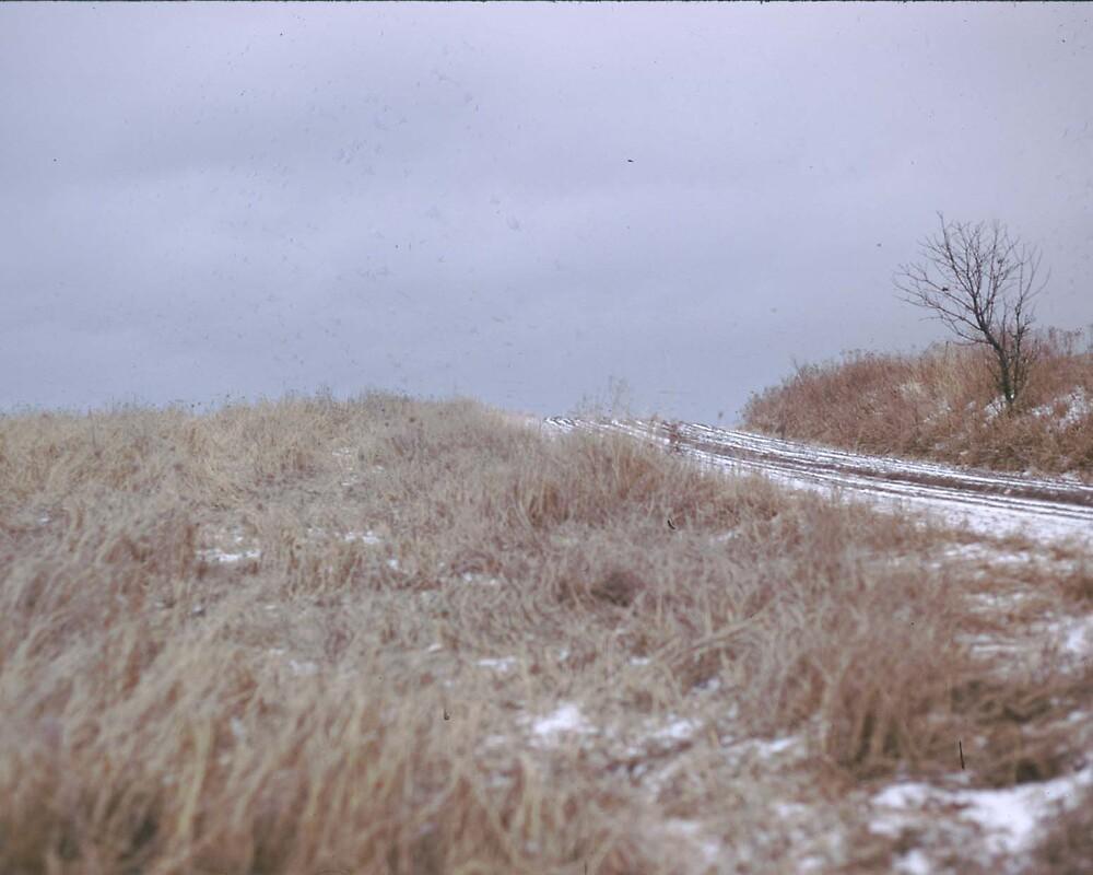 winter on the hilltop by greendarner