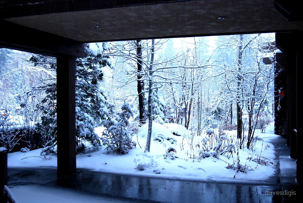 Winter Wonderland by davesdigis