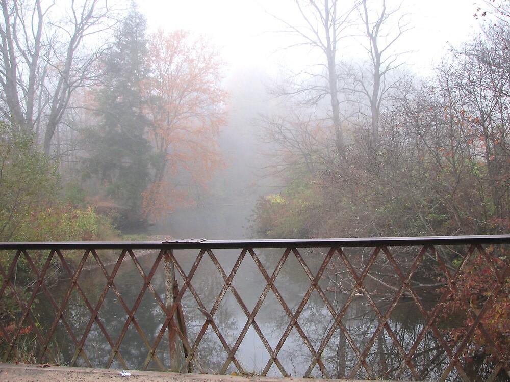 scene from an old bridge by greendarner