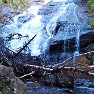 Beulach Ban Falls, Cape Breton Island by George Cousins