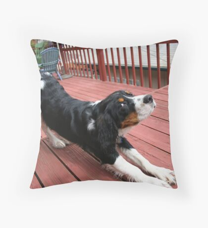 downward dog demonstrates Throw Pillow