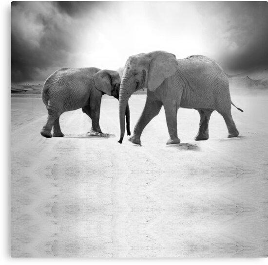 Elefanten Schwarz Und Weiß Bettbezug Und Kissenbezug Set Bettwäsche