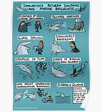 Dolphins and Marine Biologists Poster