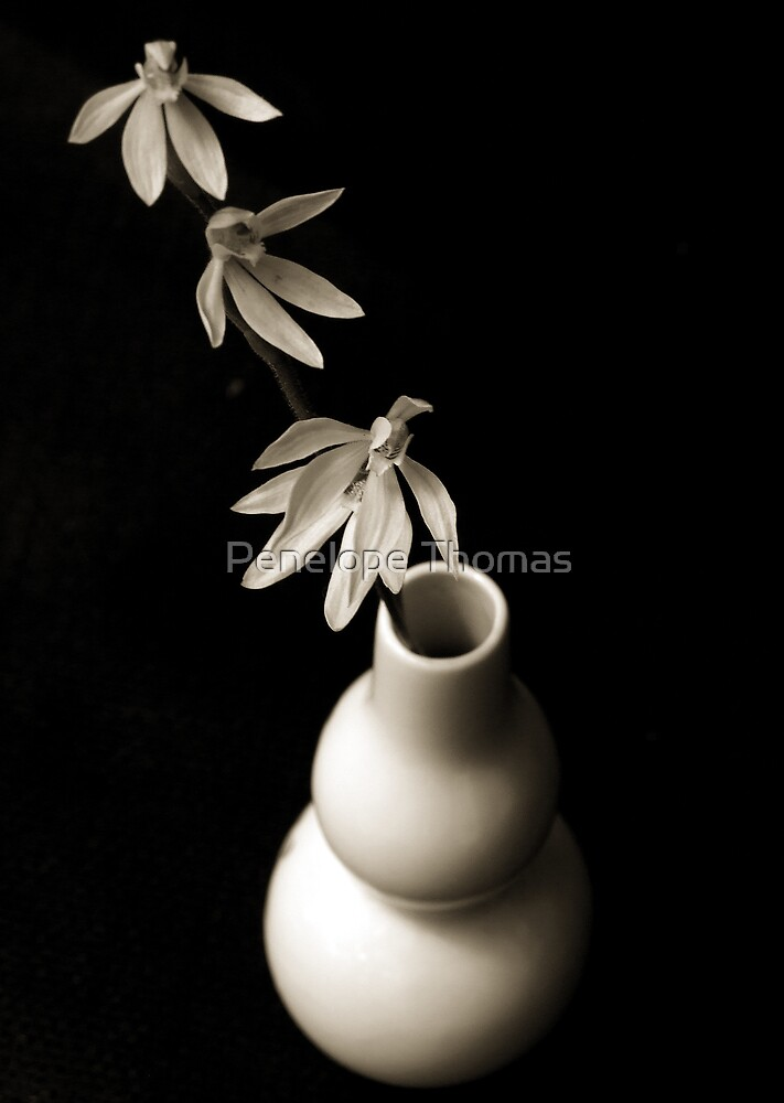 Orchids in Vase II by Penelope Thomas