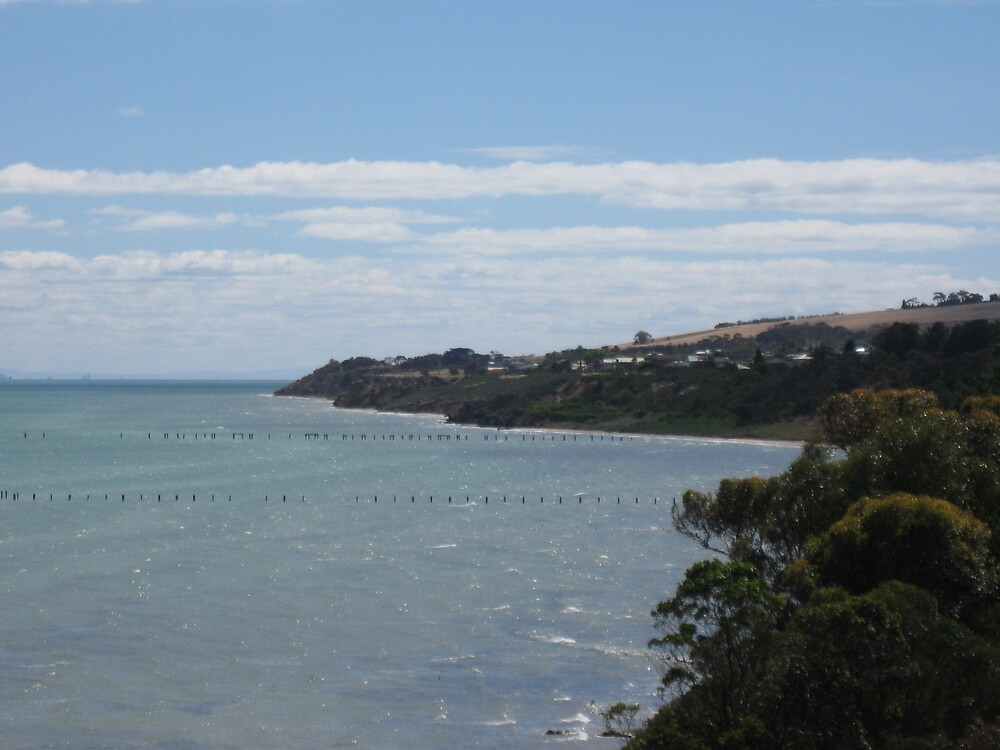 Clifton Springs Coastline by Lee Revell