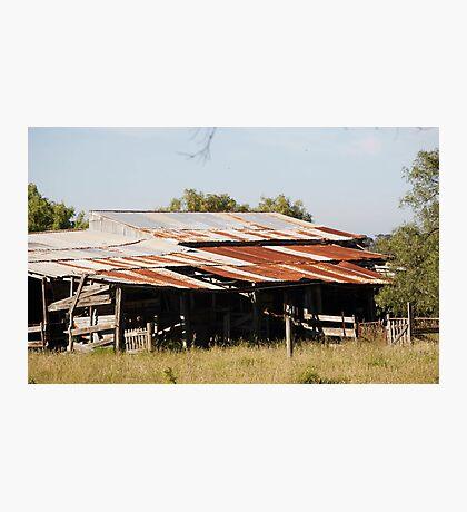farmscapes #54, farm shed Photographic Print