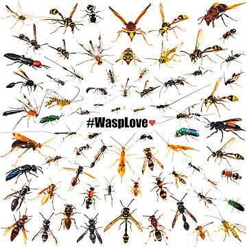 #WaspLove by ArthroLove