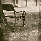 Benches in park by Silvia Ganora