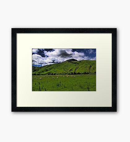 The New Zealand Countryside Framed Print