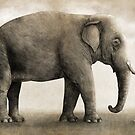 One Amazing Elephant - sepia option by Terry  Fan