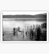 Susquehanna River Sticker
