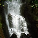 Waterfall, The Eden Project, Cornwall, UK by newbeltane
